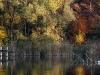 Herbstfrieden - eins