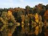 Herbstwald - vier