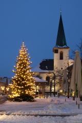 Weihnachten 2010 - Walldorf, Baden-Württemberg, Deutschland