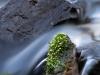 fließendes Wasser - eins