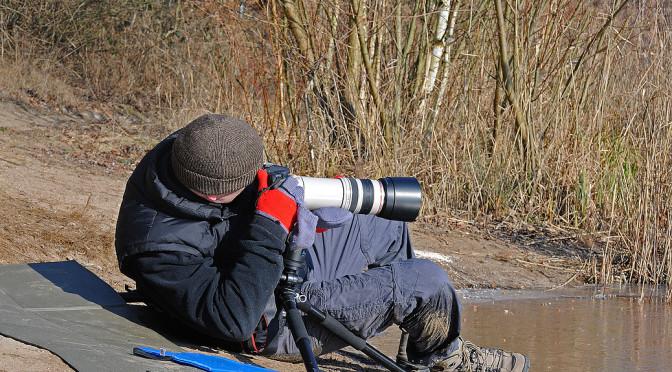 Kaufentscheidung  – Canon EF 100-400mm